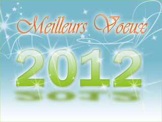 nouvel-an2012.jpg.png